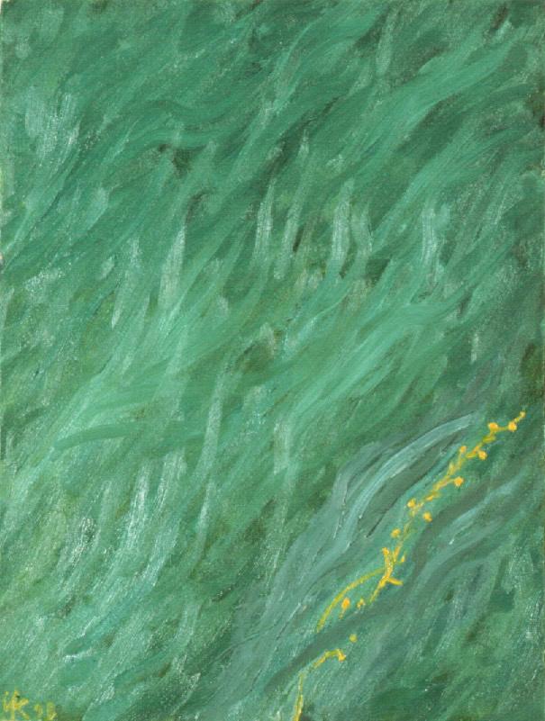 Zen Zin. 1998
