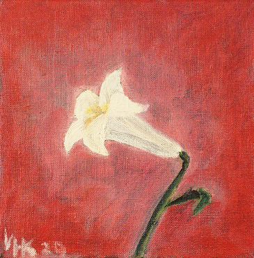 Lily. 2000