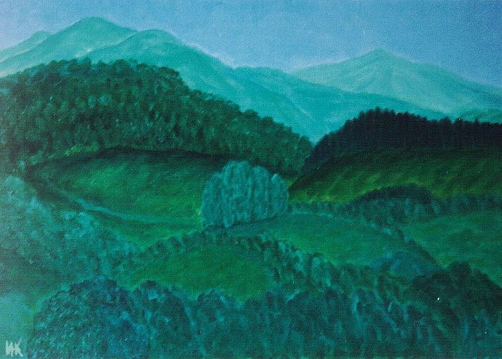 Silver hai. 1999